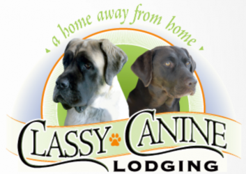 Classy Canine Lodging